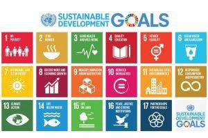 http://forumpa2017.eventifpa.it/wp-content/uploads/2016/04/agenda-2030-sviluppo-sostenibile-sdgs-onu-1024x683-300x200.jpg